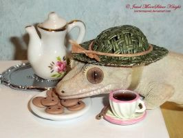 GINGER'S TEA AND COOKIES by NocturneJewel
