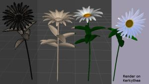 Marguerites (project images) by Micheuss