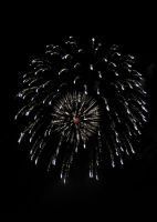 Fireworks-1704 2010 by PeaceFrogArt