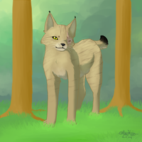 -I saw you in the forest- by InuKii