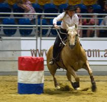 STOCK 2013 Rodeo-255 by fillyrox