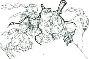 jam's turtles prelim by jamce