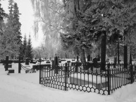 Winter graveyard VII by vonderwall