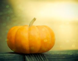Happy Halloween by Squint-Photography