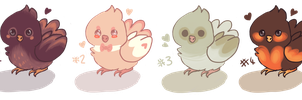 4 baby bird adopts!!! by littlewhitedragon