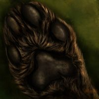 ...:::Kalassin's Paw - Commission :::... by AmorpheusArt
