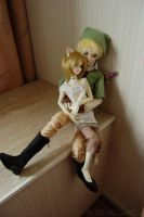 Link and Illia II. by FallMoonlitRose