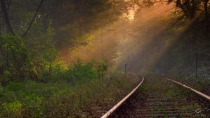 Tracks to the light 5 by wienwal
