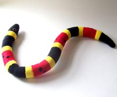 Coral snake by WeirdBugLady