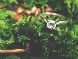 Engagement ring II by lori80