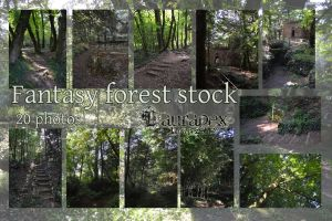 Fantasy forest stock by LauraPex