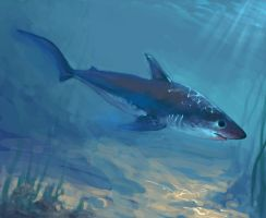 Salmon Shark by LynxMB
