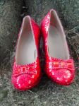 Ruby Slippers Under A Tree by TheWizardofOzzy