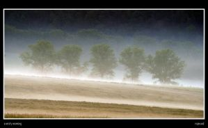 A misty morning by Rajmund67