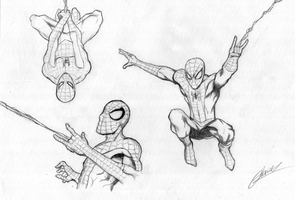 Sketchs Spider Man by gabrielvicente96