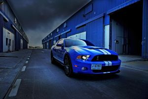 Mustang Shelby by MnsD7