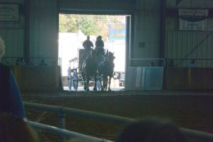 Topsfield Fair, Horse Handler Competition 17 by Miss-Tbones