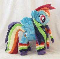 Rainbow Dash w/rainbow accessories Minky Custom Pl by ponypassions