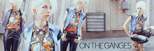 BORN IN THE USA - blog banner by OnTheGanges