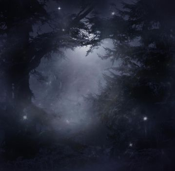Mystical Forest Stock by wyldraven