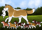 Sunny And Pups Go For Walk by EverlastingStables