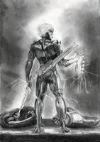 Metal Gear Rising Revengeance by GABRIELBIGBOSS