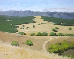 plein air: arastradero by turningshadow