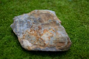 Stone on Moss Stock by dastotenkopf-stock