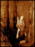 the rabbit hole 1 by stitchpuller