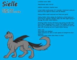 Male Sielle Reference by Leland-Adopts
