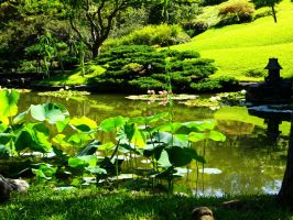 The Japanese Garden by vifetoile