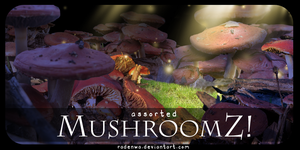 A bunch of mushroomz. by RadenWA