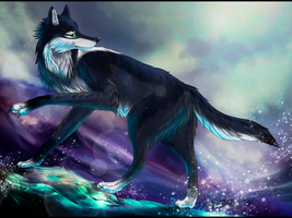 PC: Mystery wolf by syntyni