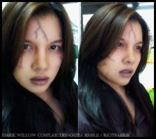 Dark Willow Make Up Trial 01 by riotfaerie