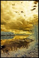 Golden Skies by DeviantPunisher