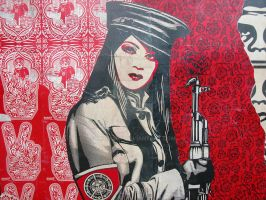 Shepard Fairey in Alixdam - 9 by hpahaut