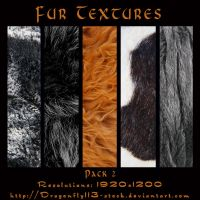 Fur Textures Pack 2 by BFstock