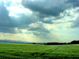 The shining above green fields by Pharaun333