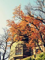 Autumn at the Castle by chemicalbreath