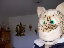 Lynx Fursuit WIP by Lufca