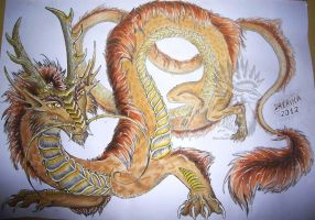 Years of the Dragon 2012 by Drerika