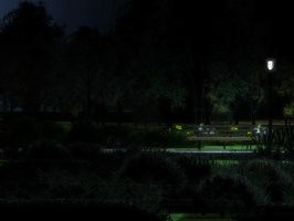 SATURDAY IN THE PARK - NIGHT by northerndigitals