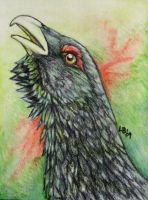 Heimdallr ACEO by Puppy-Chow