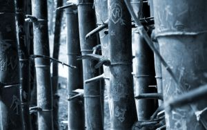 Love is in Bamboos by Gigacore