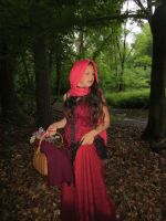 Red Riding Hood 14 by NaomiFan