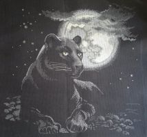 Full moon (Cross Stitch) by ouraion
