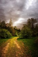 The Gathering Storm II by touch-the-flame