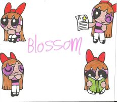 PPG Profile: Blossom by cmara