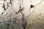 Cracked Concrete 01 by RocketStock