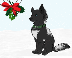 CP: Lookin' at the mistletoe - Arrin Wolf - by BlakeSWAG